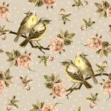 Muestra inconsútil repetida en color de la sepia Pájaros, rosas en guisantes Imagen de archivo libre de regalías