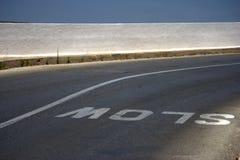 Muestra lenta en el camino Foto de archivo