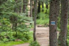 Muestra o marca turística azul en árbol Fotografía de archivo