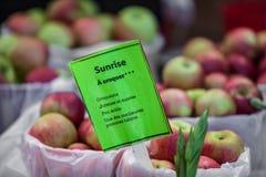 Muestra que vende manzanas de la salida del sol y que las describe como crujientes, jugosas y dulce fotos de archivo libres de regalías