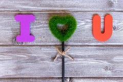 Muestra te amo hecha de letras coloridas y de corazón de la hierba verde en el fondo de madera del vintage, endecha plana fotos de archivo