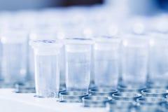 Muestras de la DNA que esperan la polimerización en cadena Imagen de archivo libre de regalías