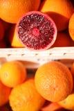 Muestras de la naranja de sangre Fotos de archivo libres de regalías