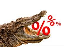 Muestras de porcentaje comidas por el cocodrilo Fotos de archivo libres de regalías