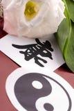 Muestras del chino de la salud Imagenes de archivo