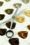Muestras del color del pelo imágenes de archivo libres de regalías