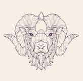 Muestras del zodiaco: Aries Imagen de archivo