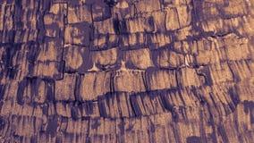 Muestras gruesas de la pintura Arte de la pintura acrílica Papel digital teñido púrpura fotos de archivo