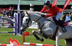 Muestre el caballo y al jinete de salto Foto de archivo libre de regalías