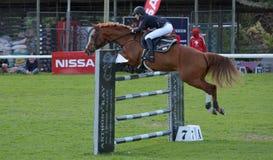Muestre el caballo y al jinete de salto Foto de archivo
