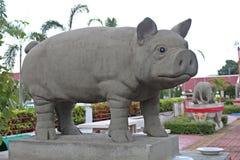 Muestre el molde del año del cerdo en ciclo de 12 años Imágenes de archivo libres de regalías