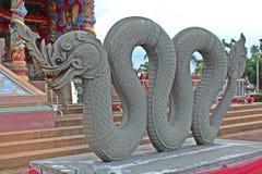 Muestre el molde del año del dragón en ciclo de 12 años Fotos de archivo
