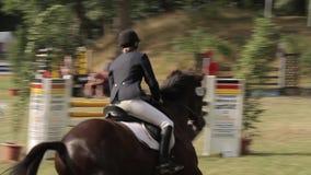 Muestre el salto con los caballos almacen de metraje de vídeo