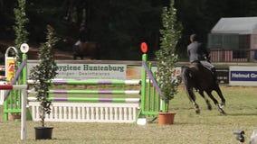 Muestre el salto con los caballos metrajes