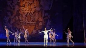 Muestre las perlas del ballet almacen de video