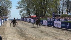Muestre los trotones corrientes durante los caballos públicos del festival de la ciudad en el parque Kaivopuisto almacen de metraje de vídeo