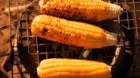Mueva de un tirón el maíz en el carbón de leña de la estufa con luz del sol en la mañana metrajes