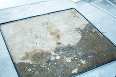 Muffa del pavimento di terrazzo Immagini Stock Libere da Diritti