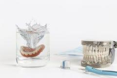 Muffa delle protesi dentarie che spruzza in acqua Fotografie Stock Libere da Diritti