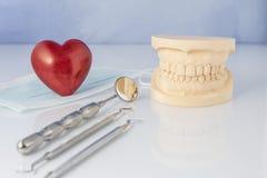 Muffa dentaria con gli strumenti di una maschera di protezione e di un cuore rosso Fotografia Stock