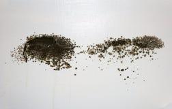 Muffa nera su una parete Fotografie Stock
