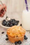 Muffin βακκινίων πρόγευμα με να μετακινήσει με το κουτάλι χεριών τα βακκίνια Στοκ Φωτογραφία