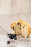 Muffin βακκινίων στο πιάτο με την κουταλιά των βακκινίων Στοκ φωτογραφία με δικαίωμα ελεύθερης χρήσης