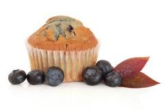 muffin βακκινίων Στοκ φωτογραφίες με δικαίωμα ελεύθερης χρήσης