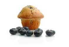 Muffin βακκινίων Στοκ Εικόνες