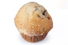 Muffin βακκινίων Στοκ φωτογραφία με δικαίωμα ελεύθερης χρήσης