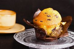 Muffin βανίλιας με τα τσιπ σοκολάτας Στοκ Εικόνες