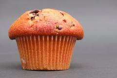 Muffin βανίλιας Στοκ εικόνες με δικαίωμα ελεύθερης χρήσης