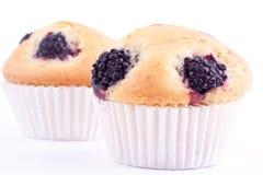 Muffin βατόμουρων Στοκ Εικόνες