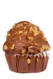 muffin καρύδι Στοκ φωτογραφία με δικαίωμα ελεύθερης χρήσης