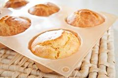 Muffin καλαμποκιού τρόφιμα μεσημεριανού γεύματος υγείας προγευμάτων Στοκ φωτογραφία με δικαίωμα ελεύθερης χρήσης