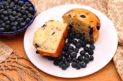 muffin κύπελλων μούρων bluberry πιάτο Στοκ Εικόνες