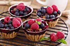 Muffin μούρων με τις βρώμες Στοκ Φωτογραφίες