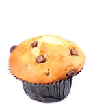 muffin σοκολάτας τσιπ στοκ φωτογραφία με δικαίωμα ελεύθερης χρήσης