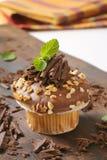 Muffin σοκολάτας με τα καρύδια στοκ εικόνα