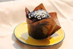 Muffin σοκολάτας Στοκ Εικόνες