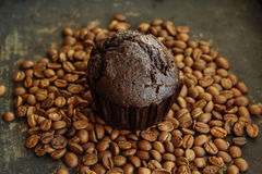 Muffin σοκολάτας Στοκ εικόνα με δικαίωμα ελεύθερης χρήσης