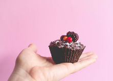 Muffin σοκολάτας Vegan Στοκ εικόνες με δικαίωμα ελεύθερης χρήσης