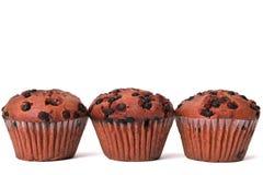 Muffin τα κέικ φλυτζανιών τσιπ σοκολάτας απομόνωσαν το άσπρο υπόβαθρο Στοκ Φωτογραφία