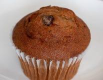 Muffin τσιπ σοκολάτας στοκ εικόνες