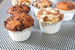 Muffin τσιπ σοκολάτας ανθυγειινή κινηματογράφηση σε πρώτο πλάνο τροφίμων Στοκ εικόνες με δικαίωμα ελεύθερης χρήσης