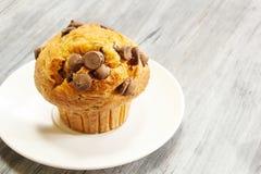 Muffin τσιπ σοκολάτας στην άσπρη ανασκόπηση Στοκ εικόνα με δικαίωμα ελεύθερης χρήσης