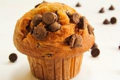 Muffin τσιπ σοκολάτας στην άσπρη ανασκόπηση Στοκ Εικόνες