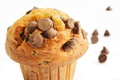 Muffin τσιπ σοκολάτας στην άσπρη ανασκόπηση Στοκ Εικόνα