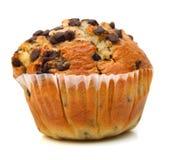 Muffin τσιπ σοκολάτας Στοκ φωτογραφία με δικαίωμα ελεύθερης χρήσης