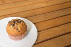 Muffin τσιπ σοκολάτας Στοκ Εικόνα